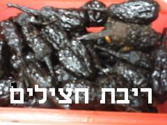 ריבת חצילים- מאסטר מתכונים