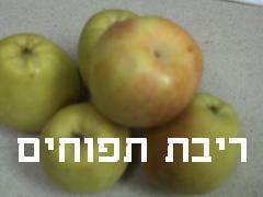 ריבת תפוחים- מאסטר מתכונים