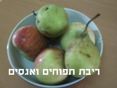 ריבת תפוחים ואגסים # יונייטד מתכונים
