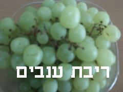 ריבת ענבים- מאסטר מתכונים