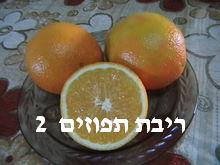 ריבת תפוזים- מאסטר מתכונים