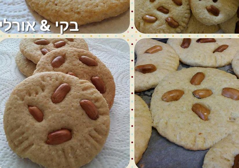 עוגיות פריכות ומפנקות שכולם יאהבו